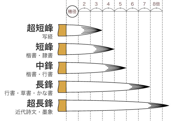 穂の直径と長さの関係図